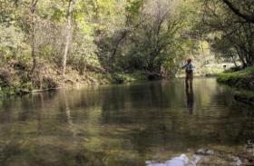 Winneshiek County, Iowa, is renowned for its cold water trout streams. Some fear that expanding hog facilities could put those streams in environmental danger.