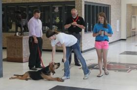 Roxy is there each day to greet the kids with Associate Principal Patrick Lamb (far left) and FMHS Principal Greg Smith (black shirt).