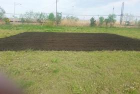 Knox Prairie Community Garden