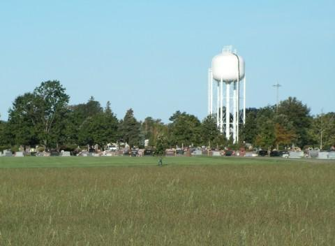 This field could be used to start a city-owned tree farm in Macomb