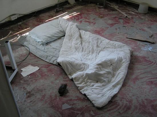 A sleeping bag and dead bird on the second floor
