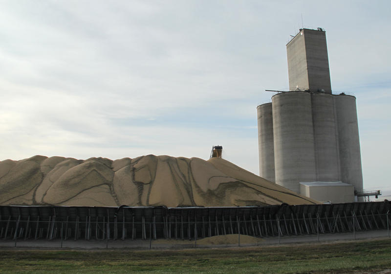Soybeans pile up at a grain elevator outside of Heartwell, Neb. Nationwide, farmers harvested record-breaking amounts of corn and soybeans in 2014.