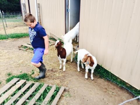 Luke Renyer, 8, in the goat pen at his family's farm in Nemaha County, Kansas
