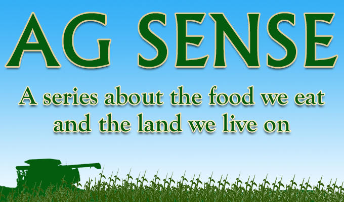 In our fourth Ag Sense event, we bring the trials and triumphs of farming to life on stage.