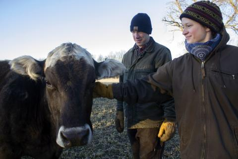 Kevin and Ranae Dietzel have a small dairy herd near Jewell, Iowa. They named their signature cheese, Ingrid's Pride, after this cow, Ingrid.
