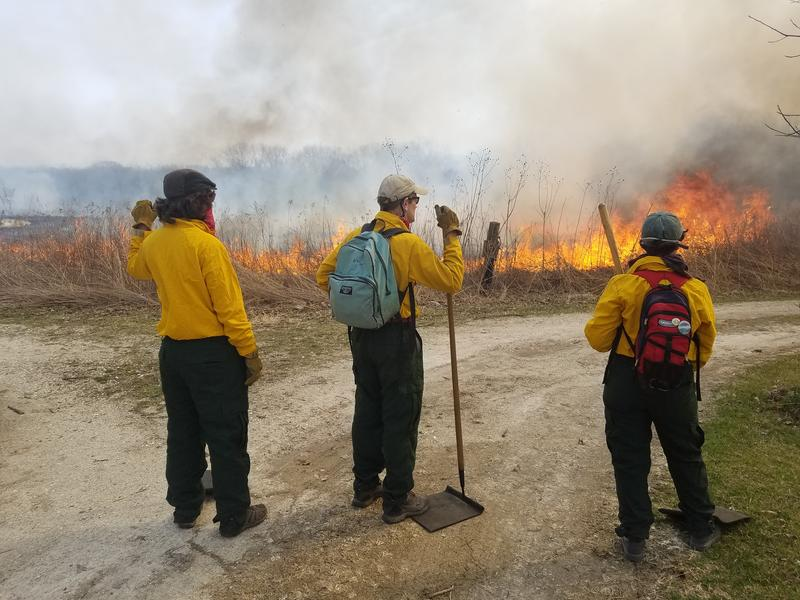 Stuart Allison (center) stands with two students near the entrance of the Green Oaks Biological Field Station to make sure the flames stay contained to the west portion of the field.
