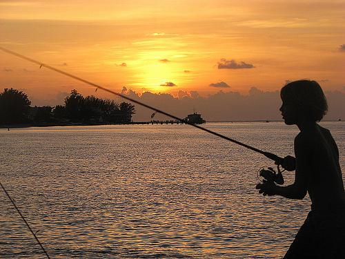 Florida offers license free saltwater fishing day wjct news for Florida one day fishing license