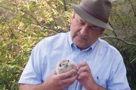 Tony Vecchio with Penelope the hedgehog.