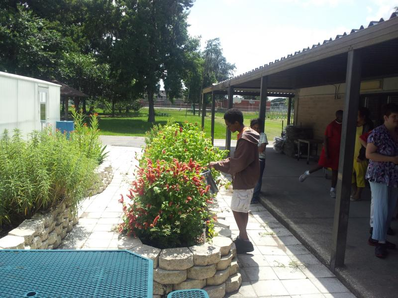 A student watering the plants