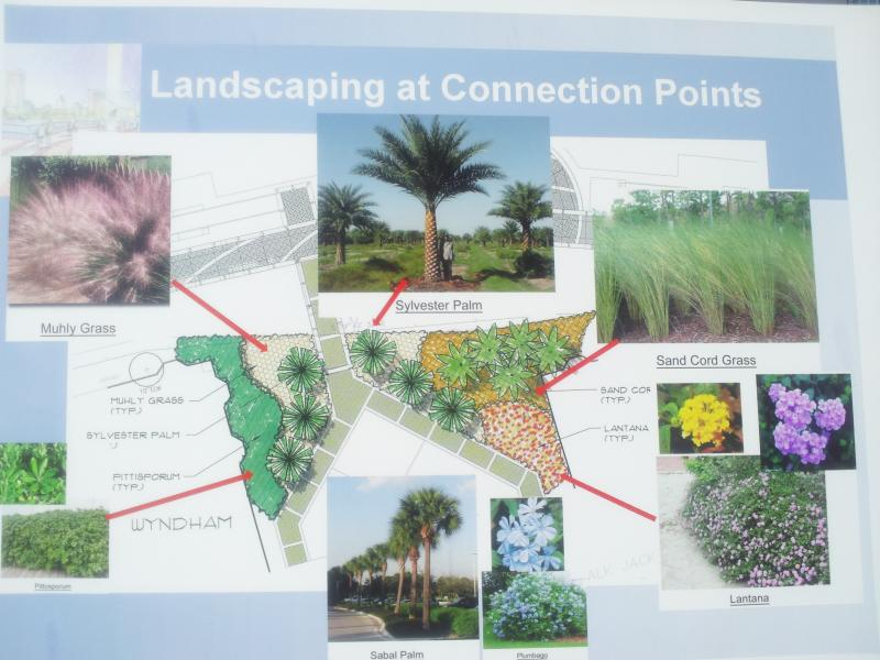 Here are some of the plants that will be part of the Riverwalk
