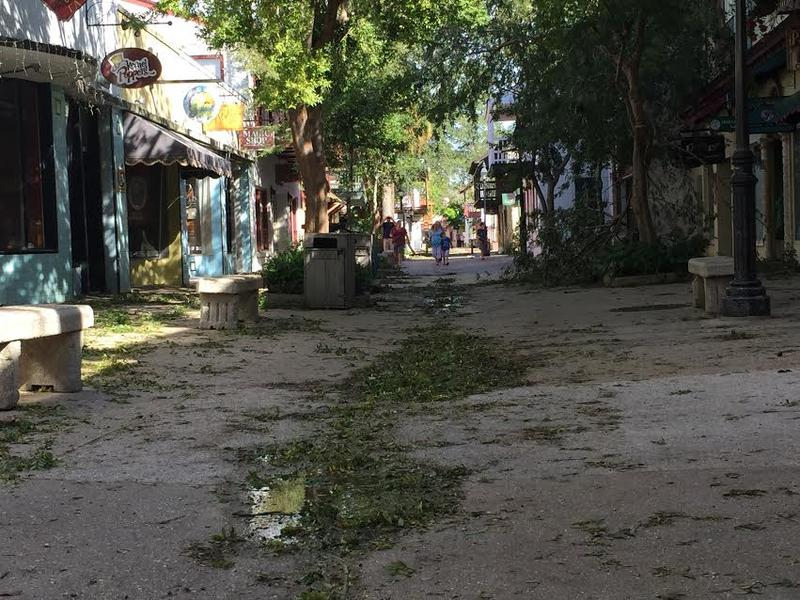St. George Street after Hurricane Matthew.