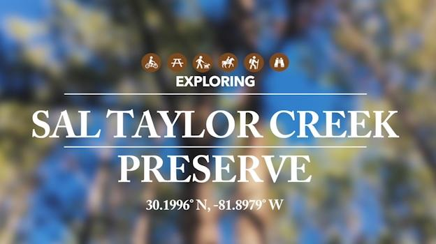 Sal Taylor Creek Preserve graphic