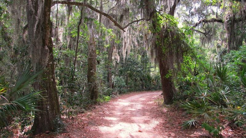 A trail at the Fort Caroline National Memorial is pictured.
