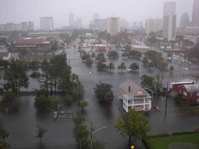 The view of from the 13th floor of Centennial Tower apartments, located at the corner of Market and First Street just north of downtown Jacksonville, at 8 a.m. Monday.