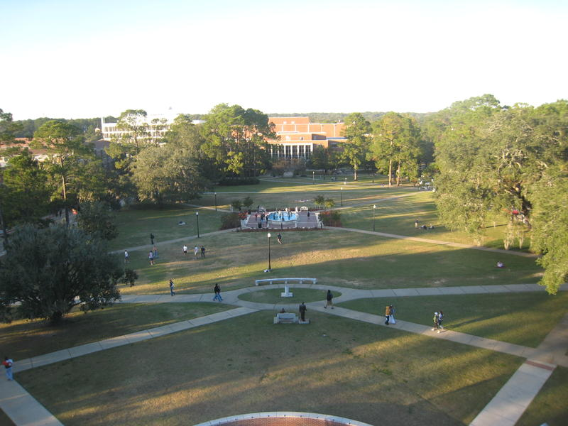 Landis Green at Florida State University.