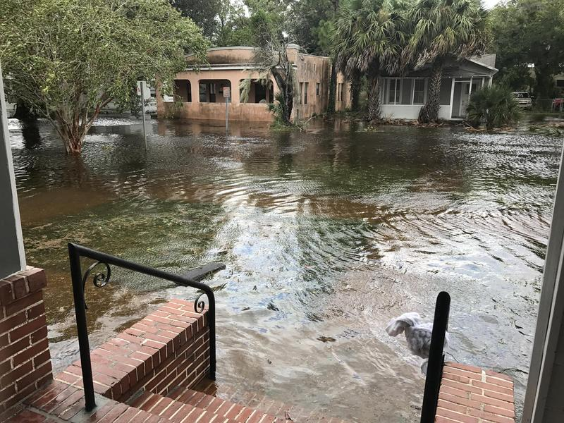 Flooding in San Marco during Hurricane Irma.