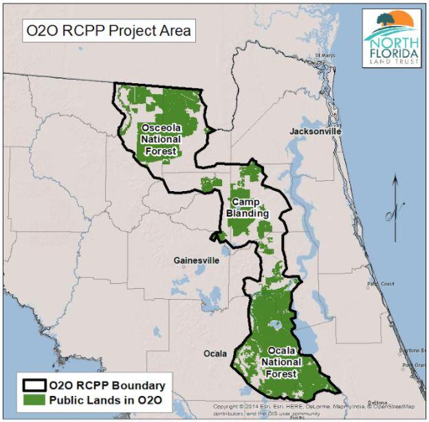 Camp Blanding Florida Map.3 5 Million Allocated To Protect Ocala To Osceola Wildlife Corridor