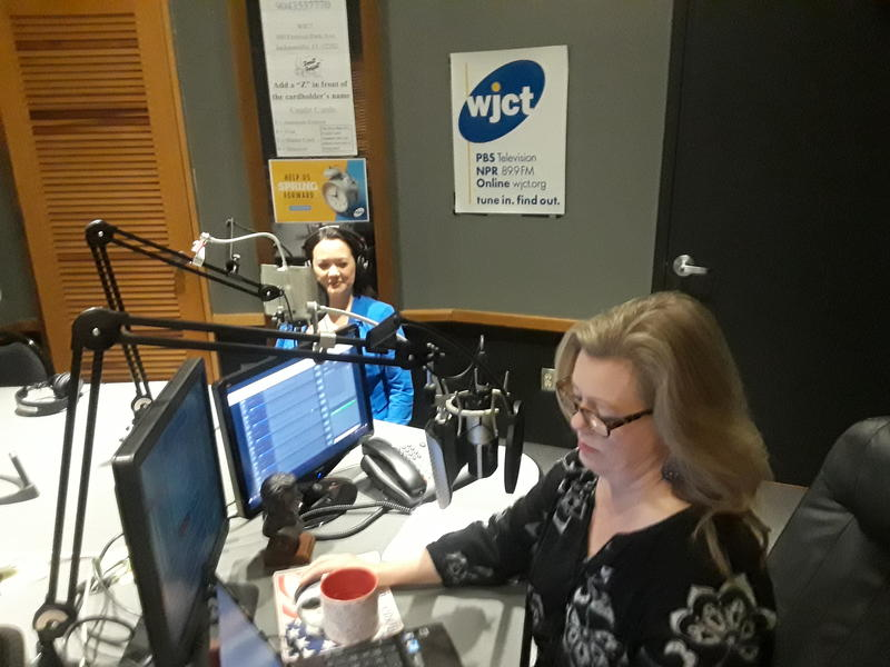 City Council President Anna Brosche appeared Wednesday on WJCT's First Coast Connect with Melissa Ross