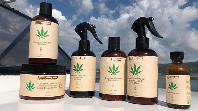 Ecoco Inc., a Chicago-based hair products manufacturer, wants to set up a 170,000-square-foot factory in EastPark.
