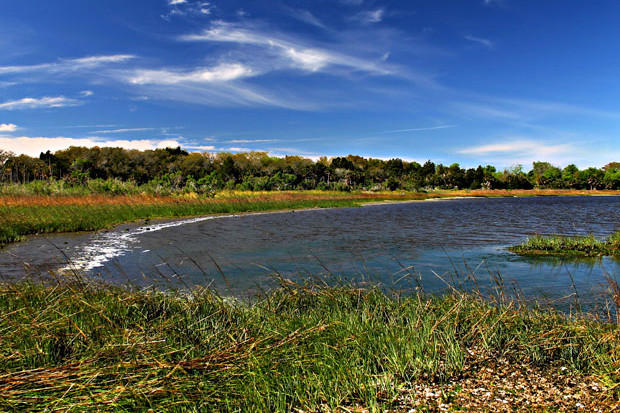 The Julington-Durbin Creek Nature Preserve
