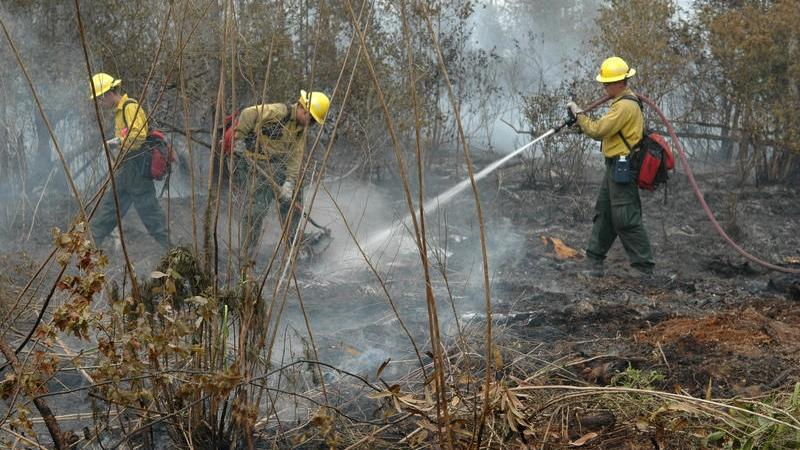 Firefighters work to snuff out flare ups from a Lake City fire in this file photo.