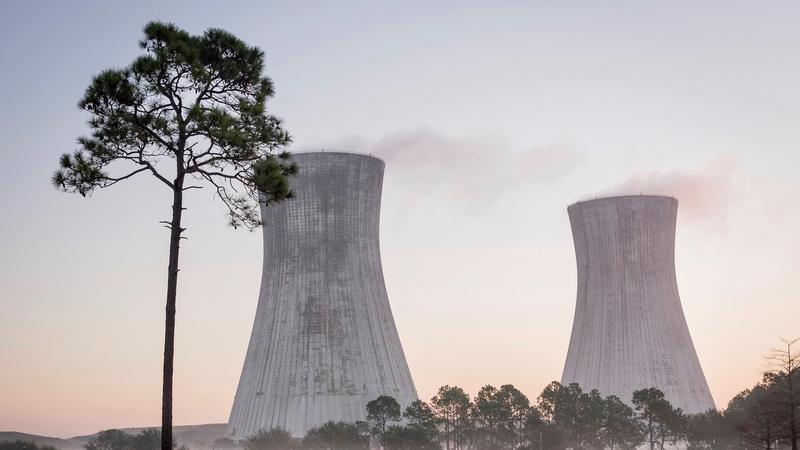 The St. Johns River Power Park's Iconic cooling towers will be imploded Saturday morning.