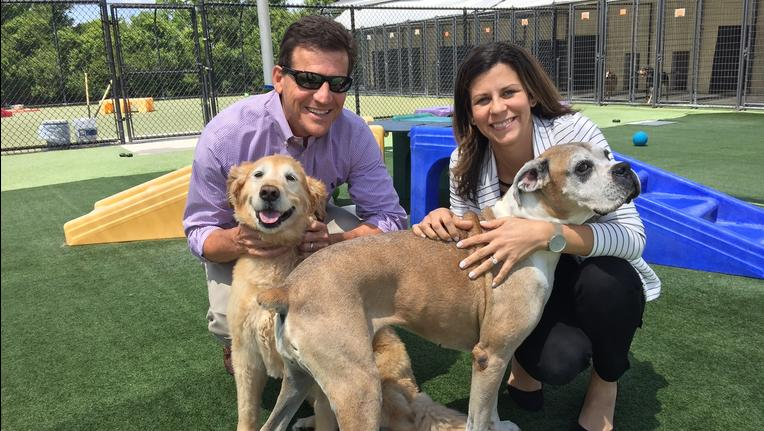 Brian Franco and Lisa Tarr with Pet Paradise pose with two of their canine friends.