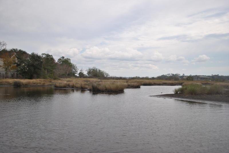A view of Big Fishweir Creek.