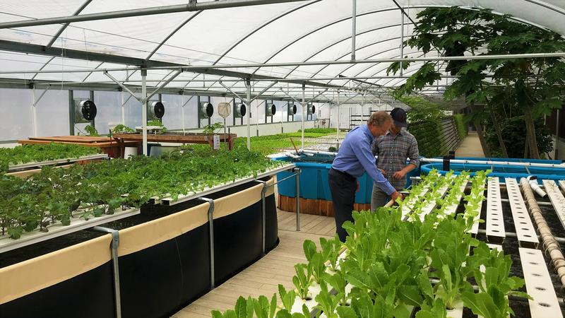 Rev. Dr. Robert V. Lee III (left) and Bobby Lee (right) inside FreshMinistries' aquaponics farm and training center in Jacksonville.