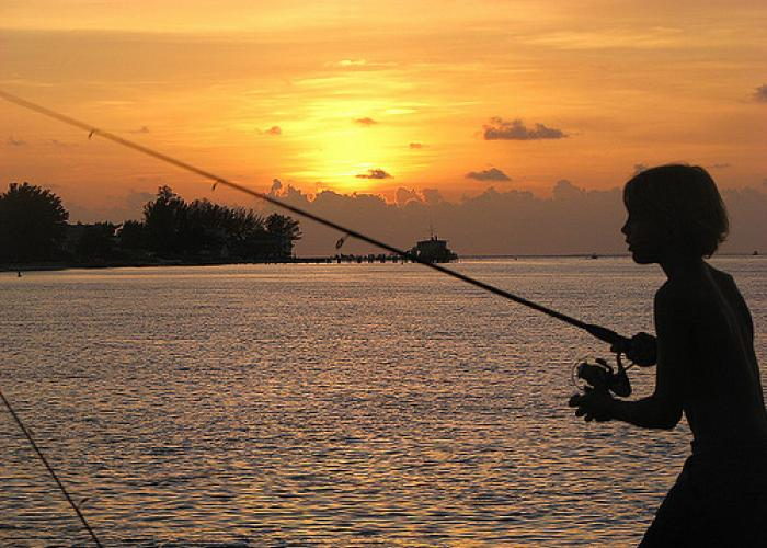 Florida 39 s fishing tourism nets 5 billion wjct news for Florida non resident saltwater fishing license
