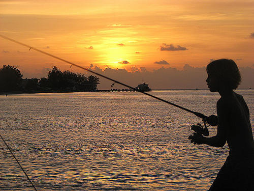 Florida offers license free saltwater fishing day wjct news for Florida saltwater fishing regulations