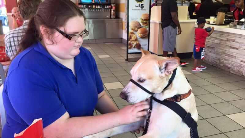 Bonny O'Donnell comforts for service dog, Carson, at a McDonald's in Savannah, GA. O'Donnell relies on Carson to help her handle post-traumatic stress caused by school bullying.