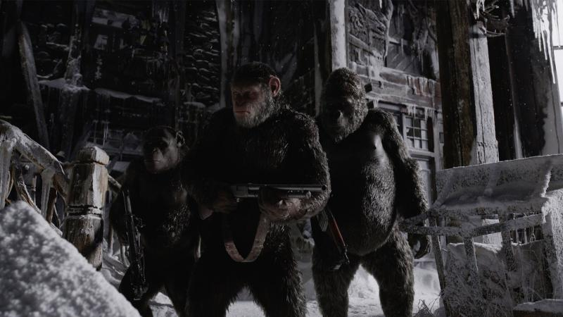 Caesar and his fellow apes prepare to cross a moral Rubicon in War for the Planet of the Apes.