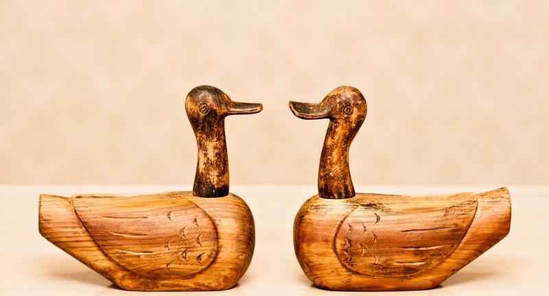 Ducks used in traditional Korean wedding ceremonies.