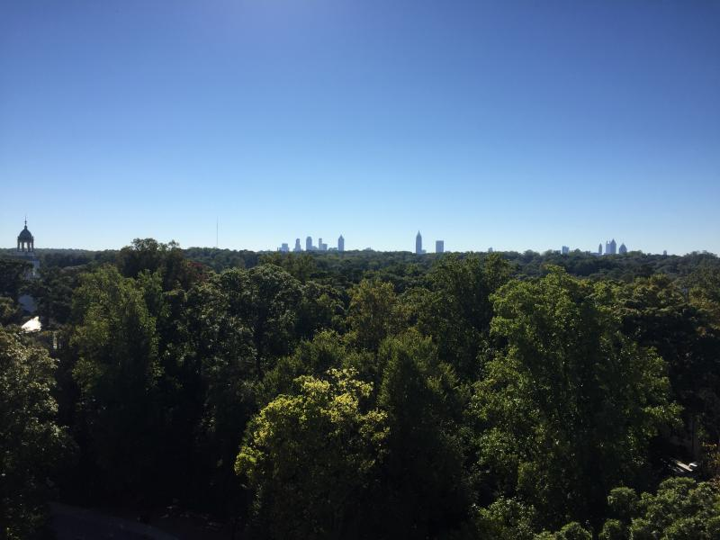 """""""City in a forest"""" is one of Atlanta's lesser known nicknames, but with more tree canopy than most U.S. cities, it is a fitting one."""