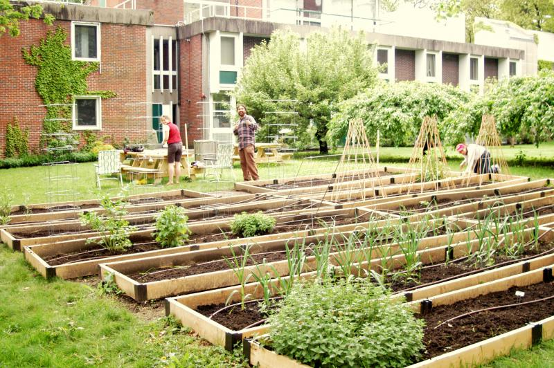 Across Georgia, local communities are building community gardens and agrihoods to address food insecurity and loss of green space.