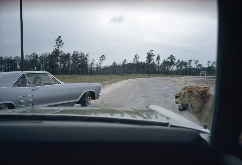 Joel Meyerowitz, Florida, 1970. Part of The Open Road exhibit, currently open at the Jepson Center.