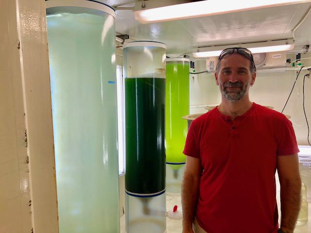 Tom Bliss with tanks of algae used to feed the oysters