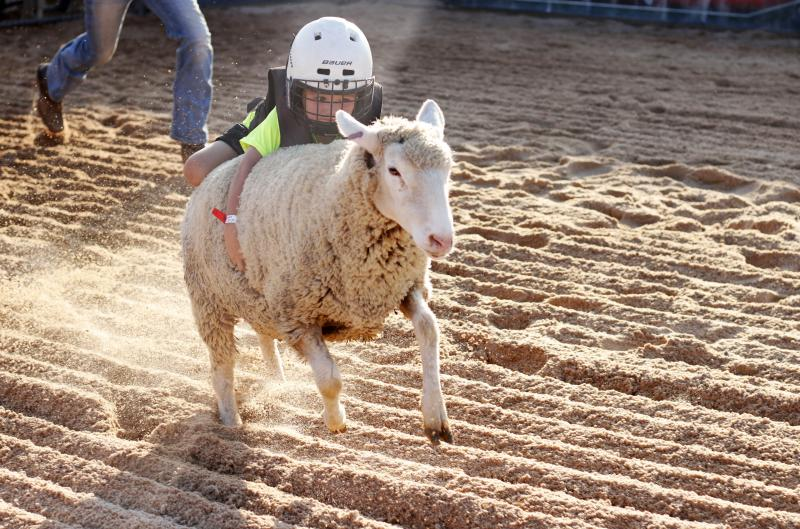 Brock Page, 4, from Ailey, Georgia, mutton races at the Georgia National Fair on Friday, October 5, 2018, in Perry, Georgia. The Georgia National Fair is open Oct. 4 through Oct.18, 2018.