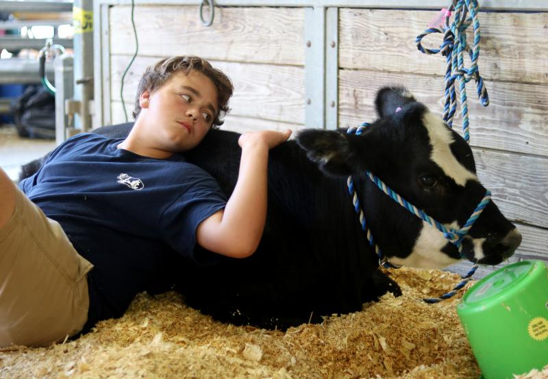 Brylee Farmer, a 14-year-old competitor in the show cow competition, sits with his cow before he has to groom it at the Georgia National Fair in Perry, Georgia, on Saturday, Oct. 6, 2018.