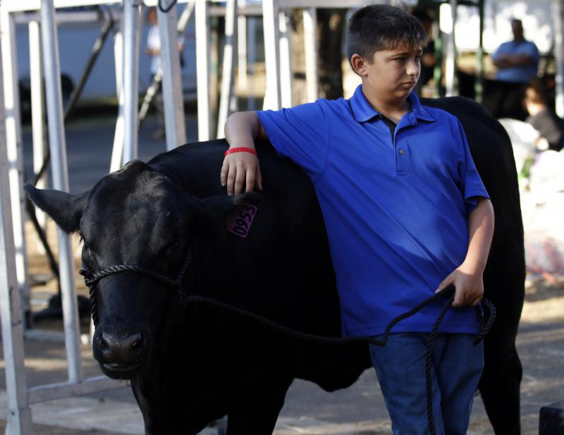 John Wesley Prickett, 13, from Perry, Georgia, watches over his cow, Eliza  at the Georgia National Fair in Perry, Georgia, on Saturday, Oct. 6, 2018.