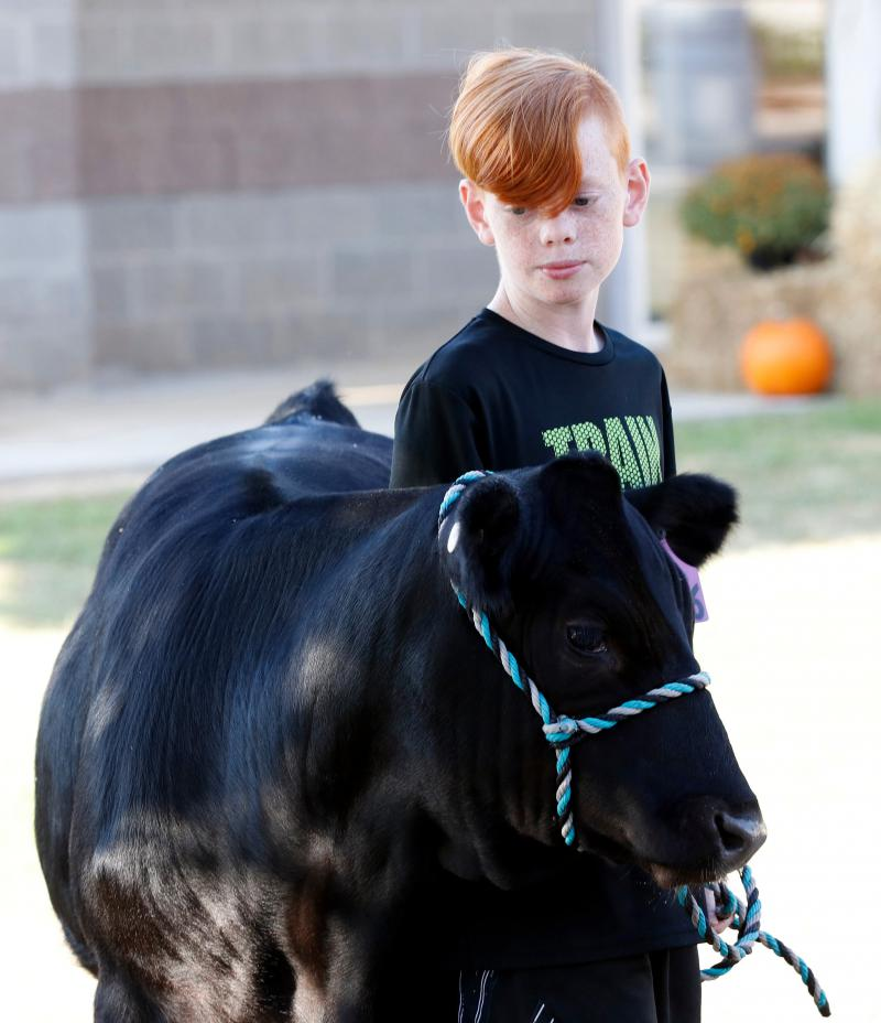 Mason Kinard, a 12-year-old from Newton County, Georgia, waits with his cow, Rudy, at the Georgia National Fair in Perry, Georgia, on Saturday, Oct. 6, 2018.