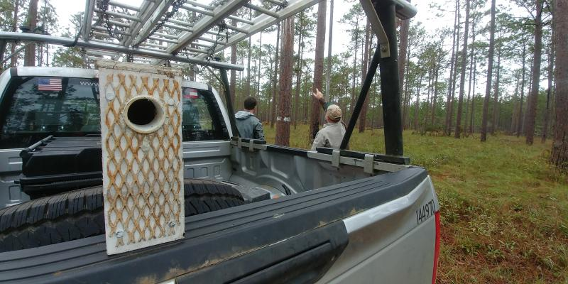US Fish & Wildlife Federation's temporary housing for displaced red cockaded woodpeckers, staff surveying downed pines in Southwest Georgia.
