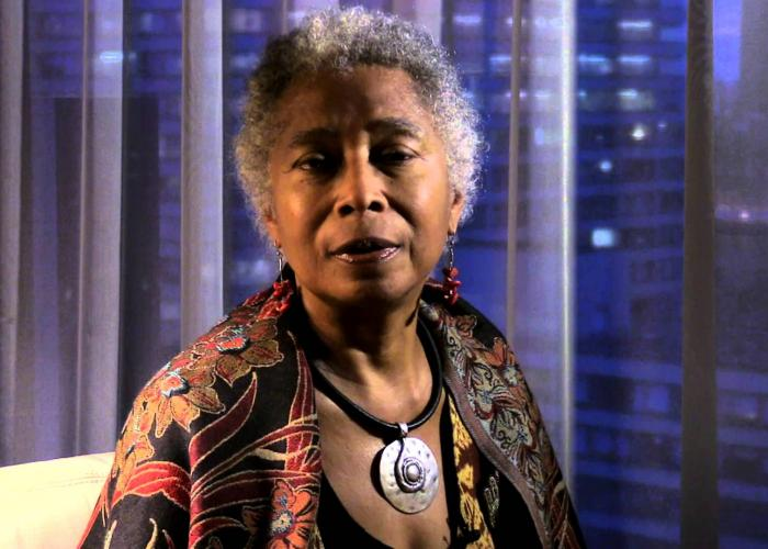 the writing styles of alice walker Alice walker, novelist and the author of the color purple activism and writing walker also published a biography of the poet, langston hughes scrapbook of styles: sentence variety in alice walker's 'am i blue.