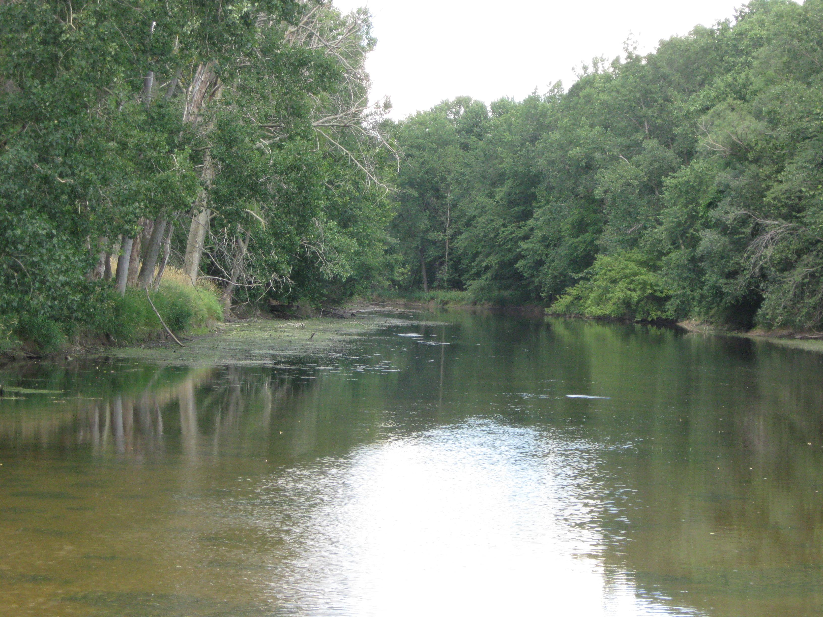 Red Cedar River ~ Red cedar fishing now allowed on msu s river wkar