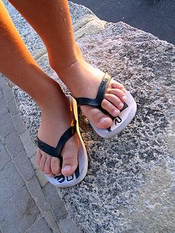 Flip-flops are a deadly footwear option, according to the 'Encyclopedia Paranoiaca.'