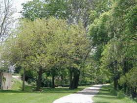 The Pathway would add more than five miles to the existing network of nonmotorized trails.