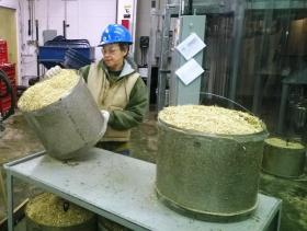MBI employee Laurel Hills inspects a tub of corn stover used in the AFEX project. It's a process by which leftover corn residue, or stover, is treated with ammonia and heat to release sugars. The end product makes a good feedstock for cattle as well as a promising biofuel.