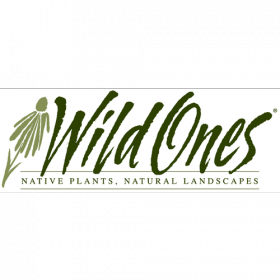 Bratton says Wild Ones programs are educational: they explain the importance of different soils, plants, and landscape design. These programs are open to the public at the Fenner Nature Center.