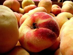 Mark Longstroth thinks the harsh Michigan winter will result in a 50 percent reduction in peaches.
